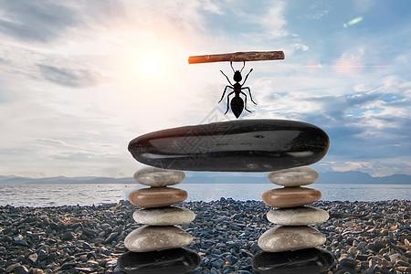 担当的蚂蚁图片