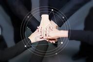 商务科技信息团队图片