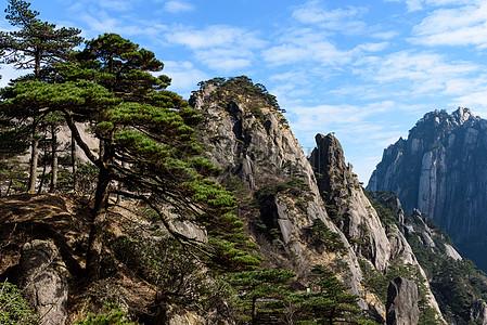 黄山奇石怪松图片