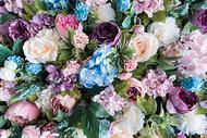 花朵花丛背景素材图片