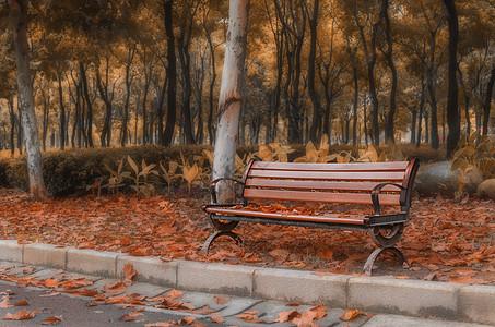 秋天公园椅子长椅图片