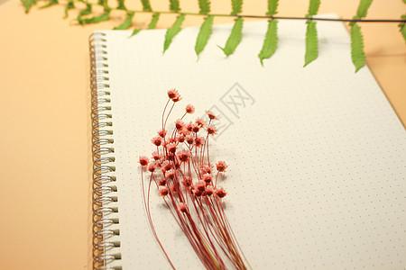 彩色笔记本图片