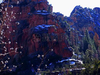 红砂岩图片
