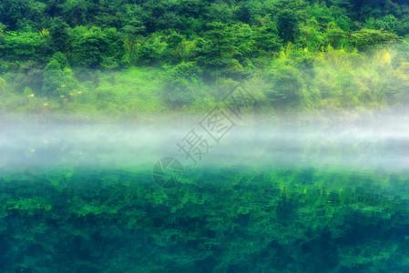 东江湖雾气绿色树林图片
