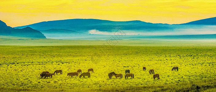 草原牧马图片