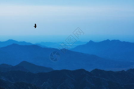 寂静山岭图片