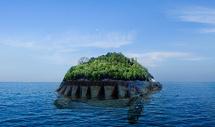 海龟岛图片