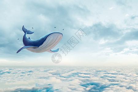 云海和鲸鱼图片