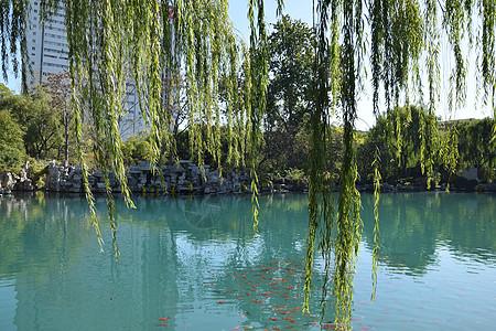 济南五龙潭景区图片
