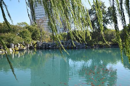 济南景点 五龙潭公园图片