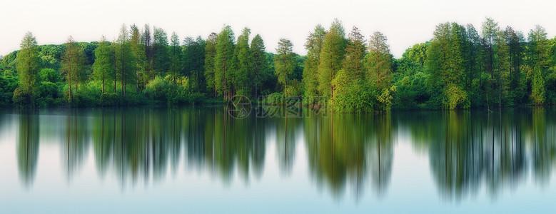 湖边树林倒影图片