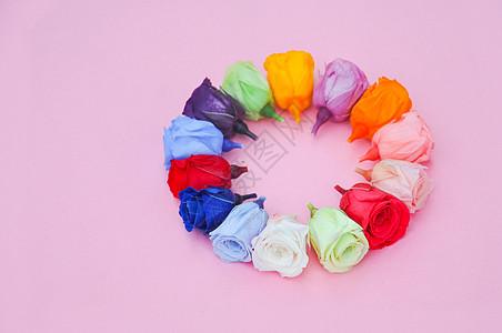 粉色背景上的迷你玫瑰花图片