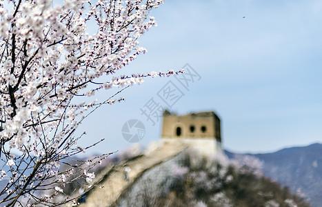 春染长城图片