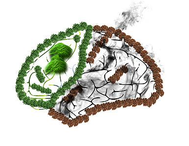 创意大脑合成素材图片