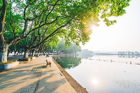 杭州西湖清晨图片