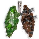 抽象创意合成肺部图片图片