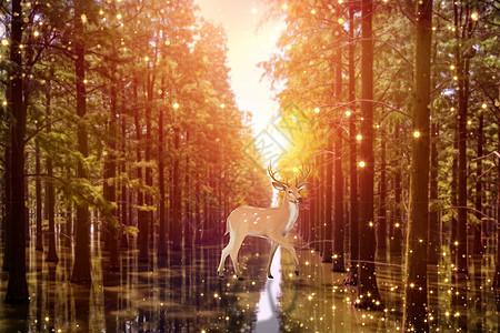 森林里的鹿精灵幻化成星河图片