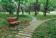 植物园休闲绿色风景图片