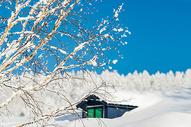 雪乡行图片