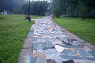 公园的早晨图片