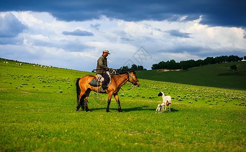 草原牧歌图片