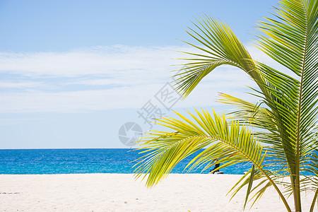 斐济风光图片