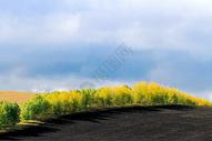 内蒙古呼伦贝尔图片