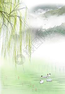柳树下湖里的鸭子图片