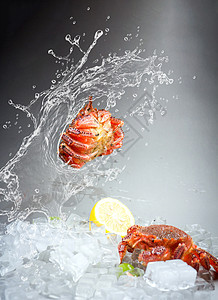 创意海鲜图片