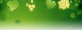 绿色banner图片