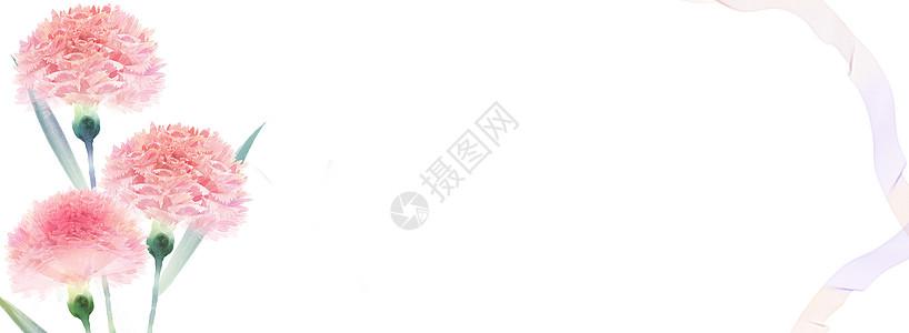 小清新banner图片