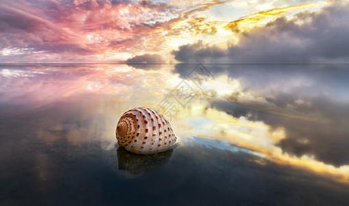天空之境中的云和海螺图片