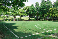 校园大学足球场草地绿的图片