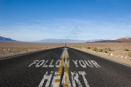 跟随你的心图片