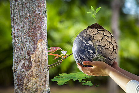 地球妈妈吮吸水资源图片