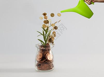 给小草灌输金钱图片