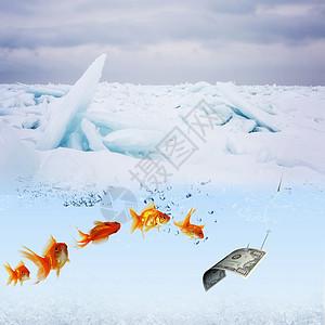 创意钓鱼图片