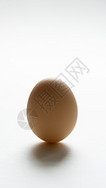 立着的鸡蛋图片
