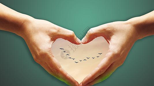 心有飞鸟图片