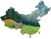"""中国""""本色""""图片"""