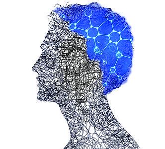 大脑的力量在于运动而不在于静止图片