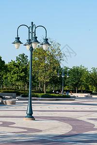 迪斯尼小镇环境图片