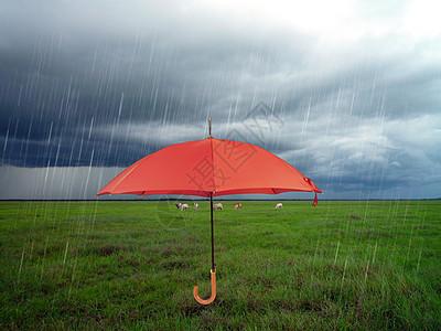 阴天雨伞图片
