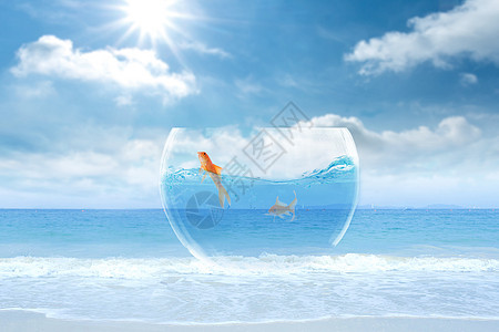 海边鱼缸图片