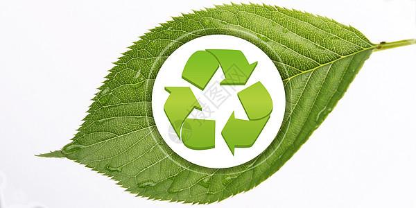 创意绿色背景-循环利用图片