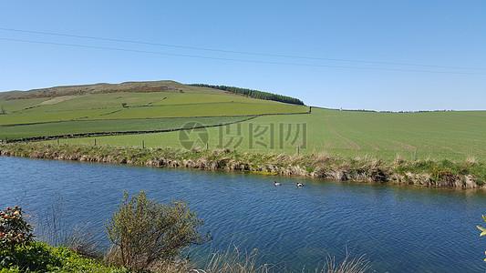 绿色草原美景图片