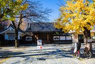 日式庭院秋景图片