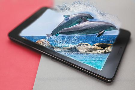 手机中海豚跃出水面图片