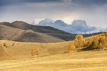 秋天的草原图片