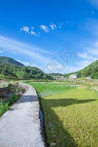 清新山村田地蓝天白云风景图片
